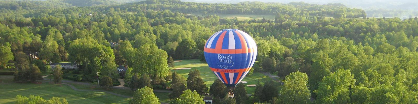 Boar's Head Hot Air Balloon Cover